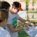 WEFTEC 2015 Service Project -2