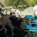 WEFTEC 2015 Service Project -5