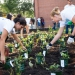 WEFTEC 2015 Service Project -8