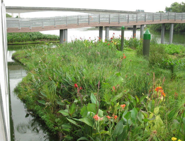 FTWs in Singapore help increase nutrient removal in waterways. Photo courtesy of Floating Island International.