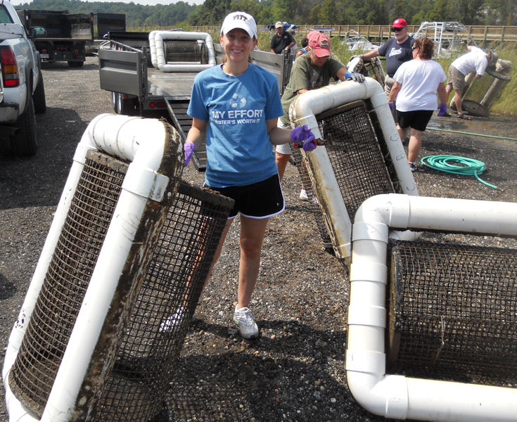 WEFTEC program coordinator Lauren Henretty helps collect yearling oysters and prepare cages for new spat. WEF photo/Henretty.