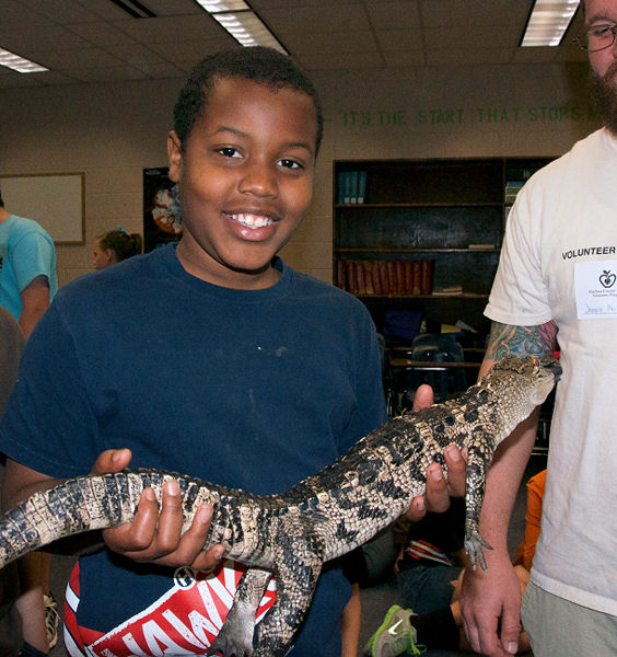 To celebrate World Water Day, High Springs Community School educated students about native species that require healthy water habitats. Students were able to hold this baby alligator and learn about protecting their habitats. Photo courtesy of Weaver.