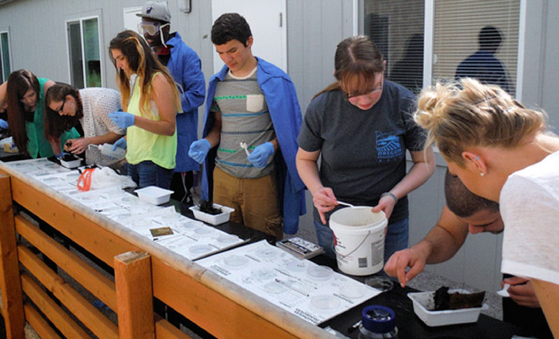 Students at Life Christian School (Aloha, Ore.) study water parameters and the ecology of Butternut Creek. The program was funded by PNCWA's Adopt-A-School program. Photo courtesy of PNCWA.