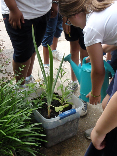 Students learned about rain gardens and how they help manage stormwater during WEF's annual service project, Operation H2O. WEF photo/Bradley.