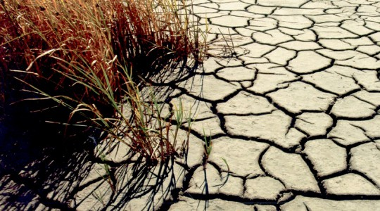 The U.S. Geological Survey monitors drought conditions across the country and provides resources such as the California drought visualization website and Vegetation Drought Response Index to the public. Photo courtesy of the U.S. Geological Survey.