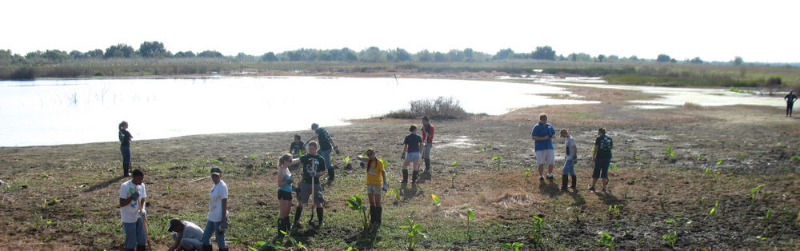 "During WEFTEC 2009, volunteers help at the ""Wading for Wetlands"" service project. Photo courtesy of Haley Falconer."