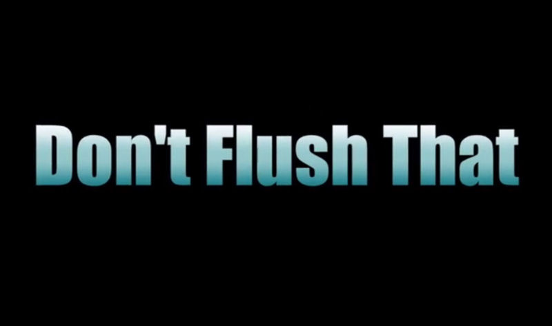 "The ""Don't Flush That"" song, set to the tune of Bruce Springsteen's ""Pink Cadillac,"" uses humor to educate about items that should not be discarded down the toilet. Photo courtesy of the Cheshire Career Center TV and Film program at Keene High School."