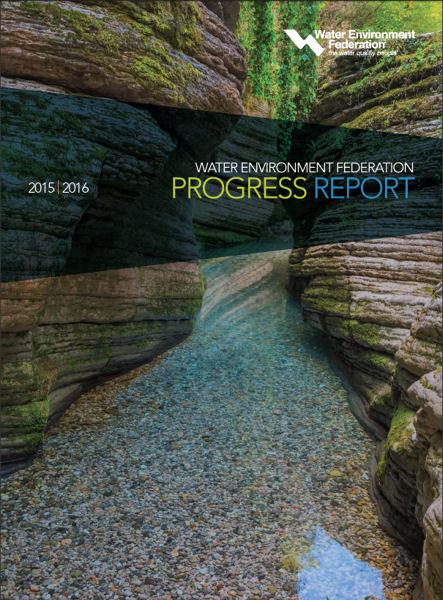 WEF Progress Report