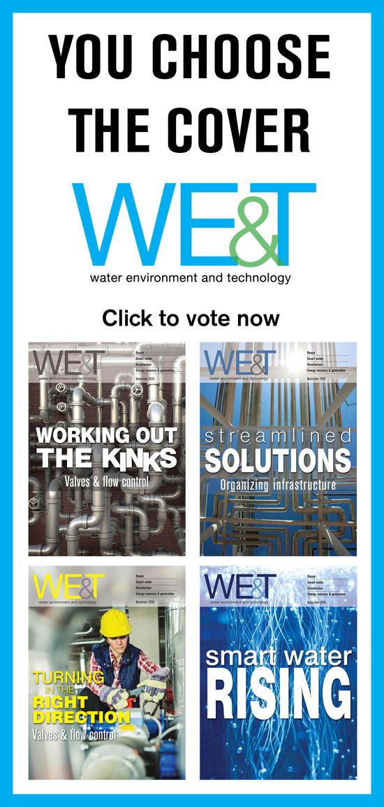 WET Cover Vote ad