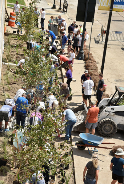 Volunteers work together to build a bioswale and rain garden. Photo courtesy of Oscar and Associates.