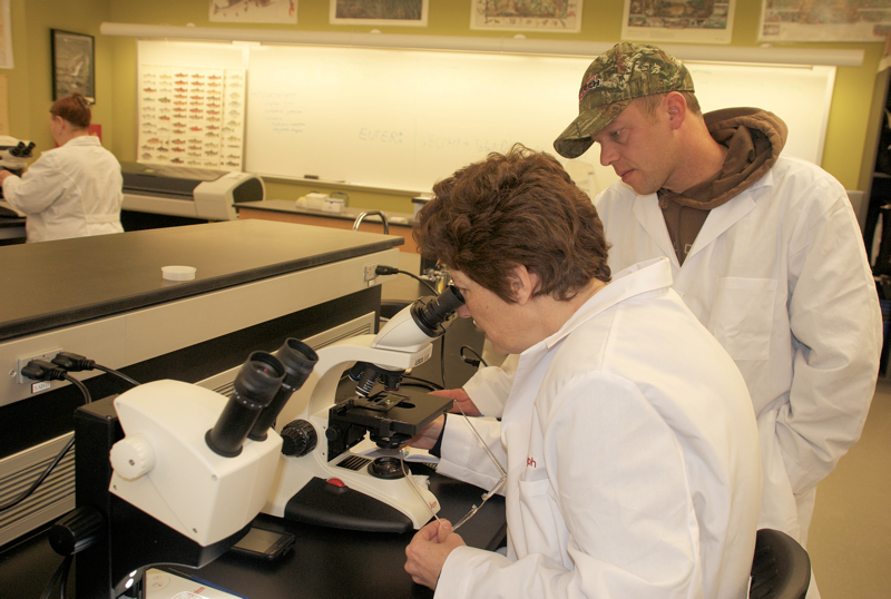Students taking the Estuarine and Nearshore Ecology class identify zooplankton in the laboratory. Photo courtesy of Skagit Valley College