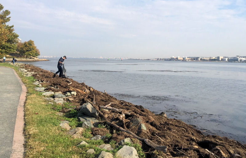 Staff members clean litter from the waterfront in Alexandria. WEF photo, Fulcher.