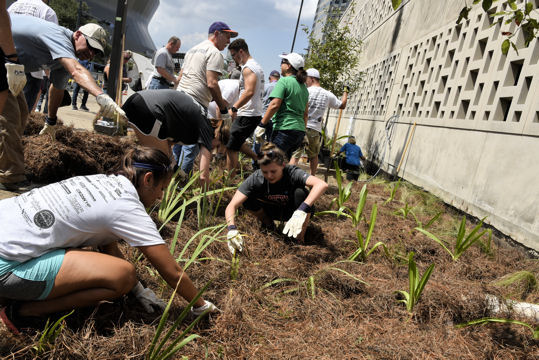 Volunteers install plants at New Orleans City Hall during WEFTEC 2016 Community Service Project. Photos courtesy of Oscar & Associates.