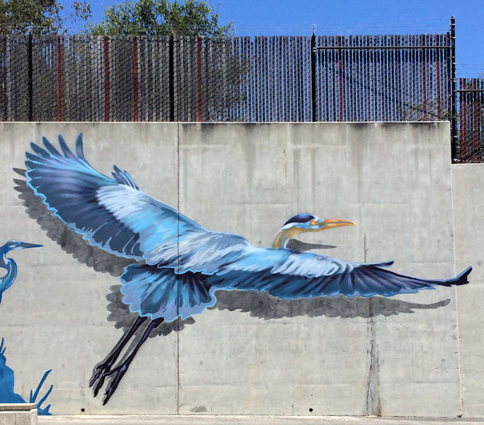 On Aug. 15, the City of Santa Cruz Arts Commission will hold an event to dedicate a new ocean and estuary themed mural at the City of Santa Cruz Wastewater Treatment Facility. Local artist, Elijah Pfotenhauer, painted a variety of animals that rely on clean waterways as part of this mural. Photo courtesy of Pfotenhauer.